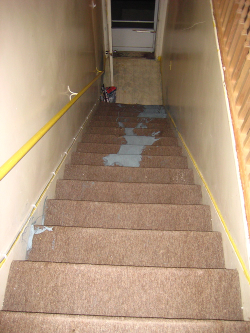 Paint down carpeted steps