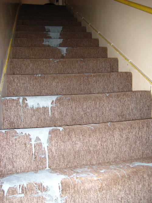 Carpeted stairs dripped with paint