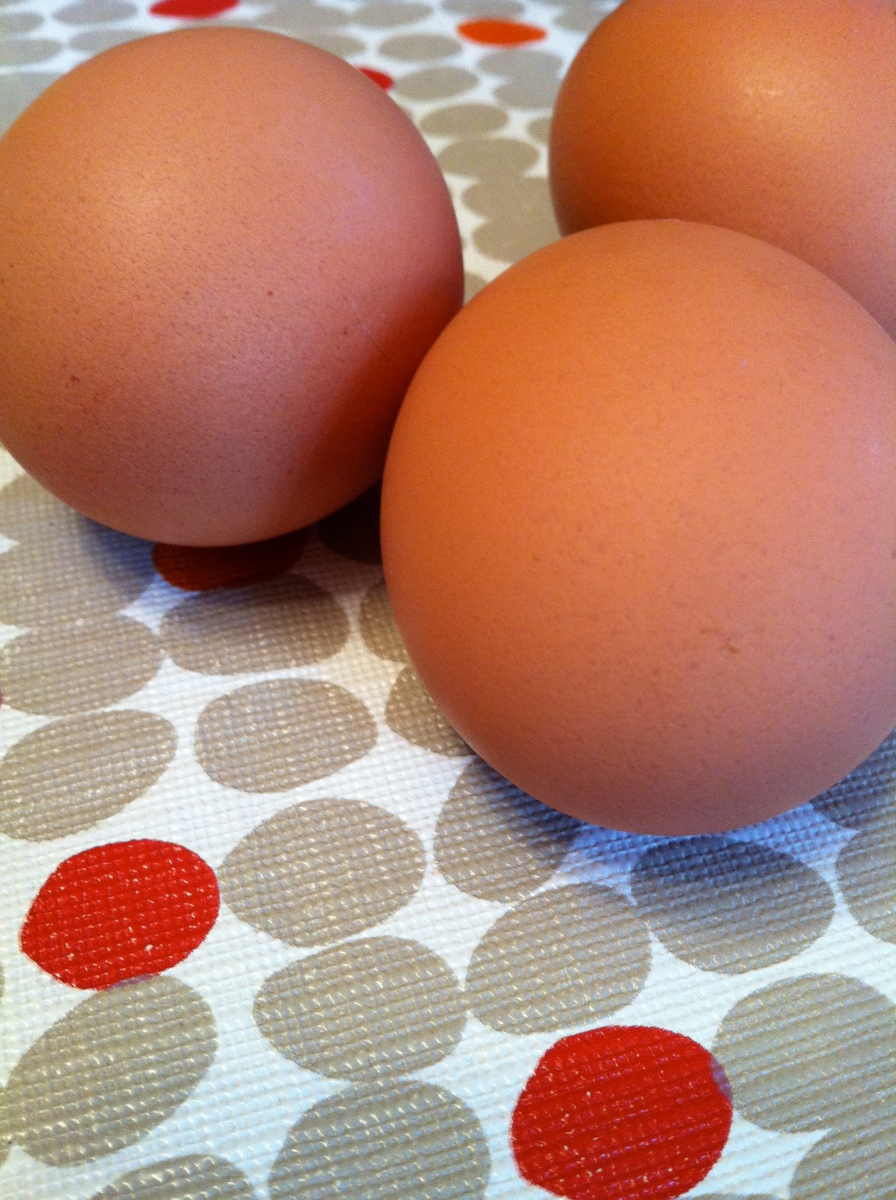 Locality: Gingerich's Organic Eggs